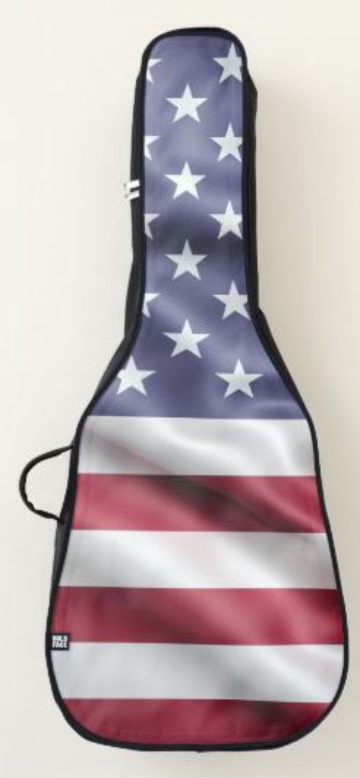American Flag Guitar Case